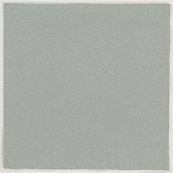 2000 x Grey Paper Dinner Napkins Serviettes - 40cm/2ply