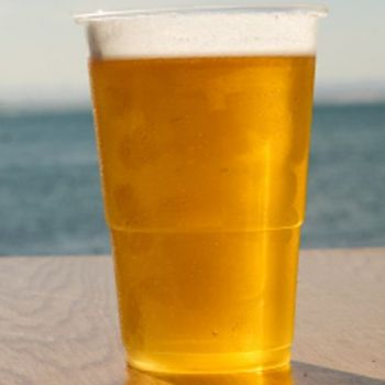 500 x Clear Plastic Disposable Pint Glasses